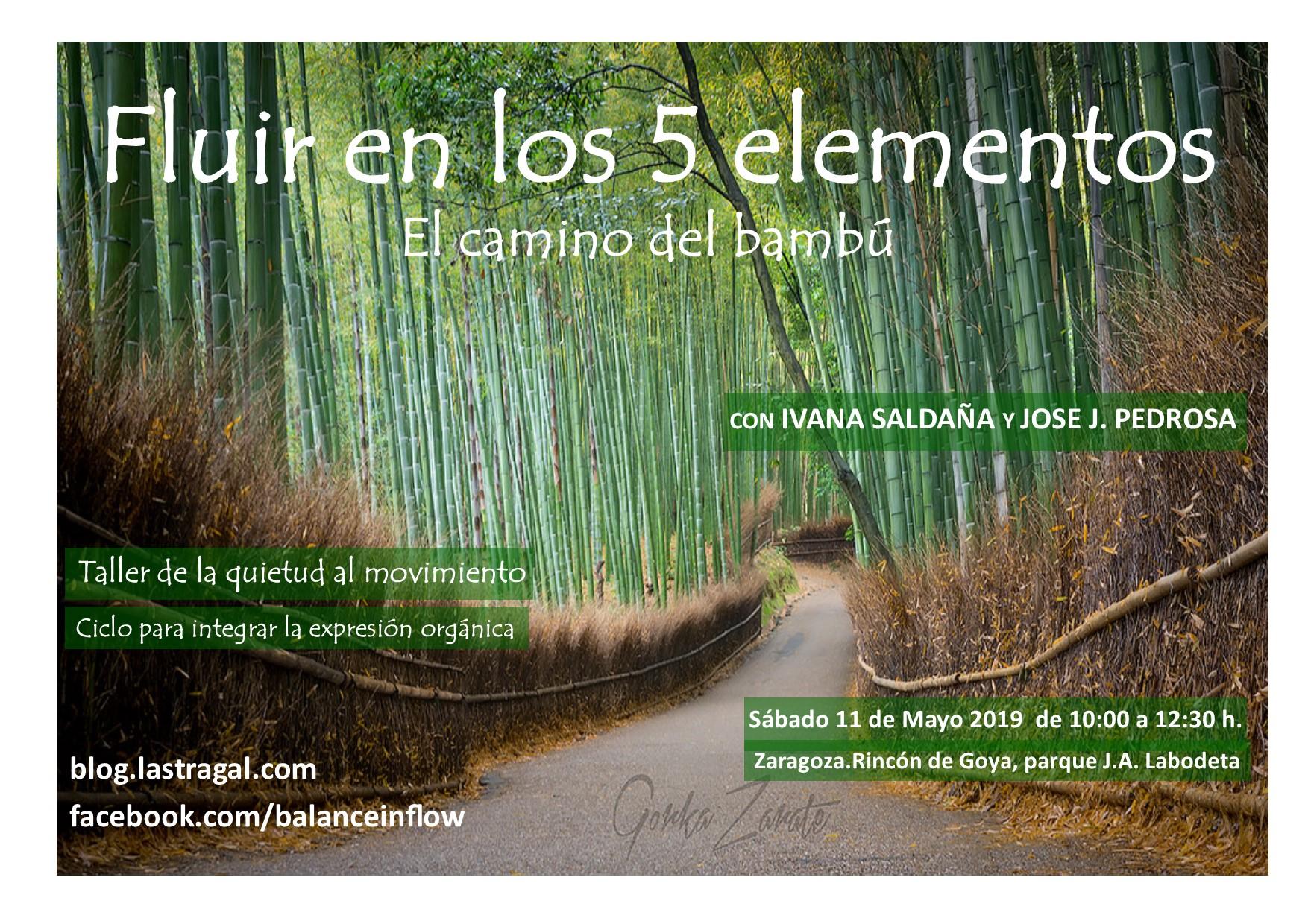 cartel con un camino estrecho asfaltado atravesando un bosquecito de bambú